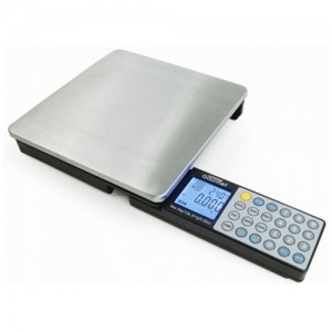 11LB Digital Nutrition Scale with Foldaway Keyboard