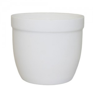 Royal Classic 150ml Mini Cup