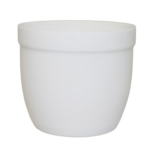 Royal Classic 150ml Mini Cup