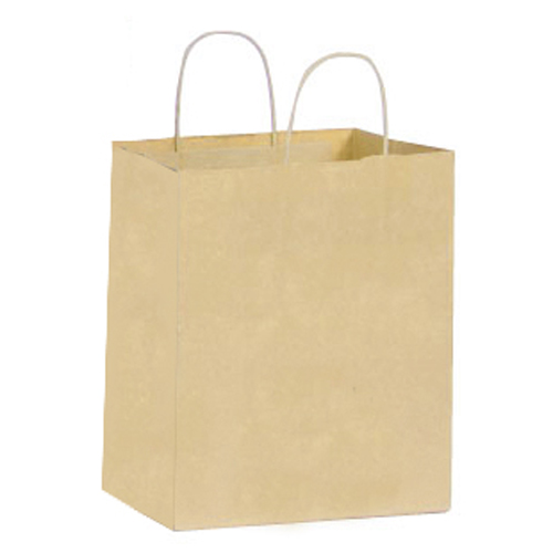 Large Paper Shopping Bag - 250 CT