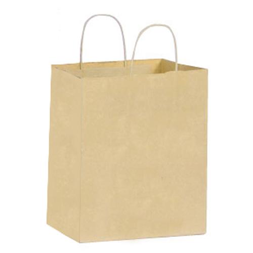 Large Paper Shopping Bag - 250 CT